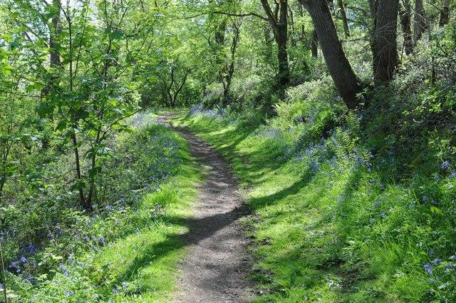 Path ascending Midsummer Hill