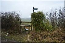 TR2255 : Footpath, Bramling Downs by N Chadwick