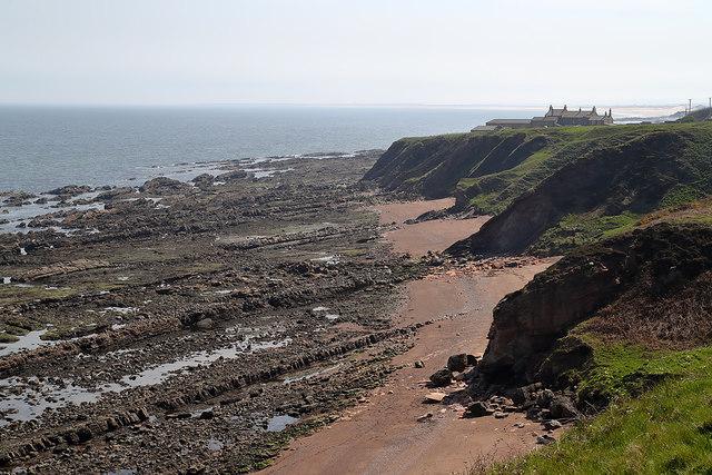 The shoreline at Cargie's Plantation