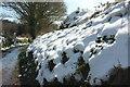 SX8964 : Snowy hedgebank, Cockington valley by Derek Harper