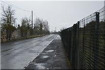 SX9780 : Dawlish Warren Rd by N Chadwick