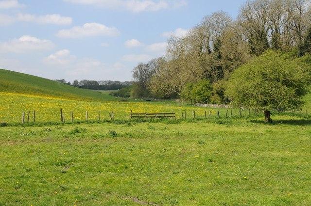 Farmland beside Wiggold Covert