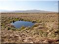 SD9973 : Pond below Great Whernside by Stephen Craven