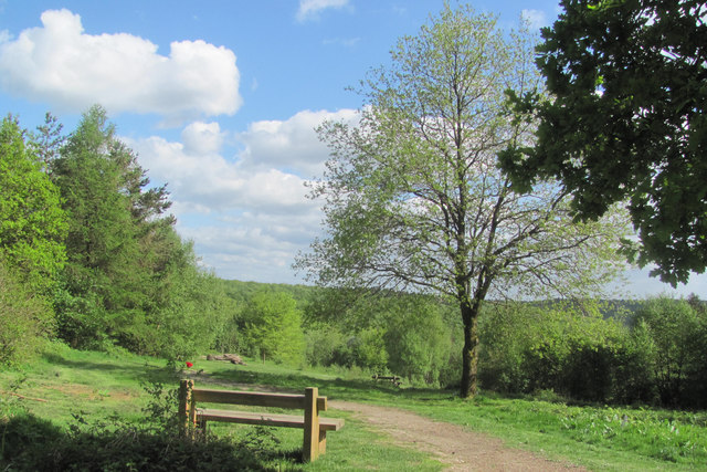 Planned view from the New Cafe in Wendover Woods