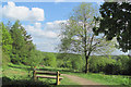 SP8808 : Planned view from the New Cafe in Wendover Woods by Chris Reynolds