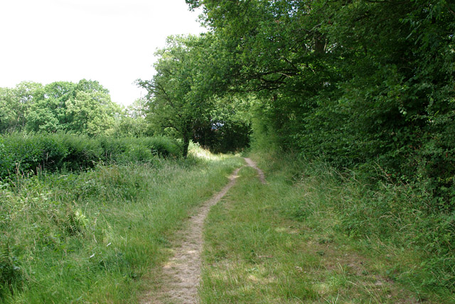 Bridleway towards Strood Green