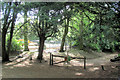 SP8809 : The Holloway from Mansion Hill, in Wendover Woods by Chris Reynolds