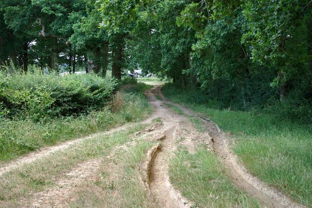 Tweed Lane