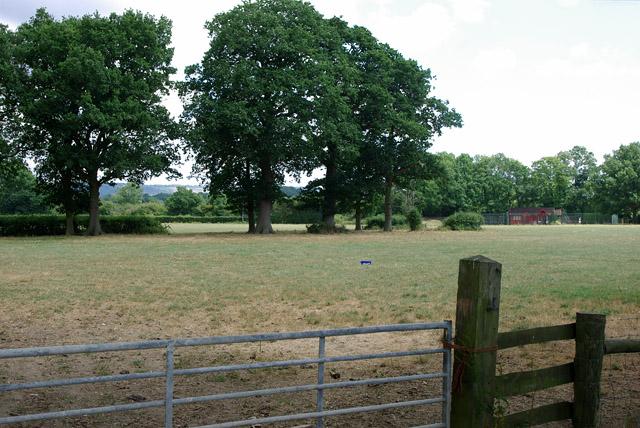 Field north of Tweed Lane