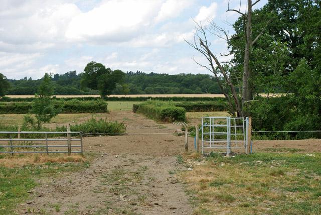 Footpath near Bushbury Farm