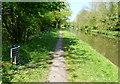 SJ7921 : Shropshire Union Canal milepost at Shelmore Wood by Mat Fascione