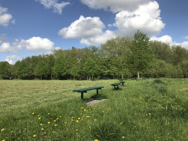 Benches in Lyme Valley Park