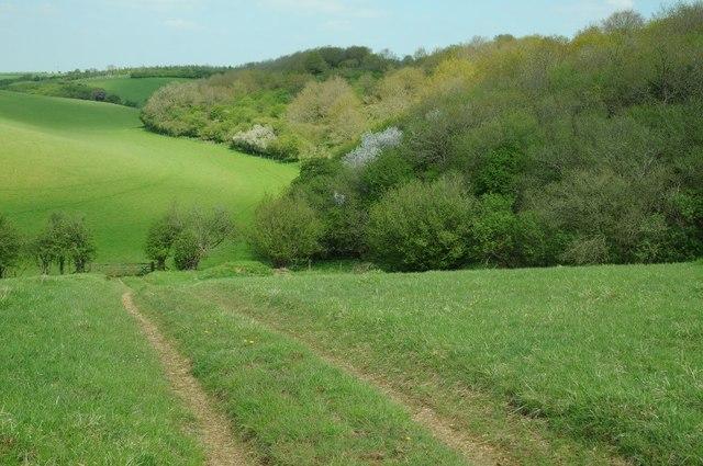 Farmland beside Barnsley Wood