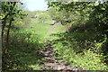 ST1386 : Field footpath to Gwaun-gledyr-uchaf by M J Roscoe