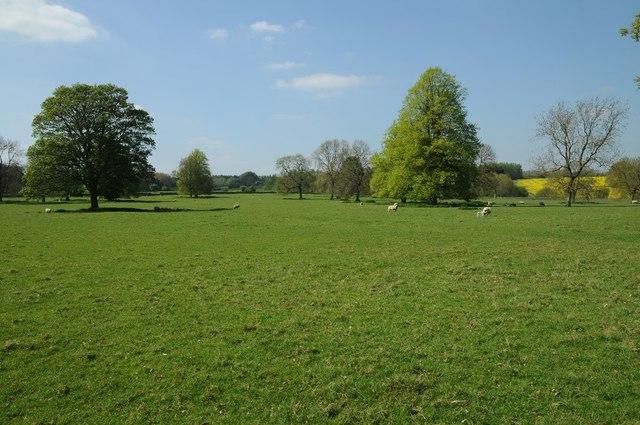 Trees in Barnsley Park
