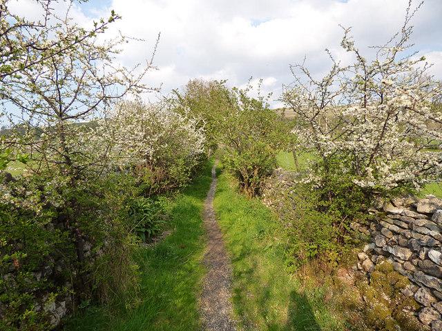 Lovers Lane, Kettlewell