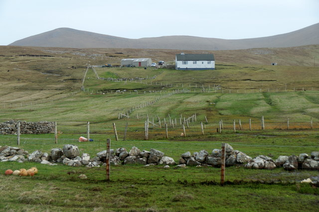 Freyers from Hiorawick, Foula