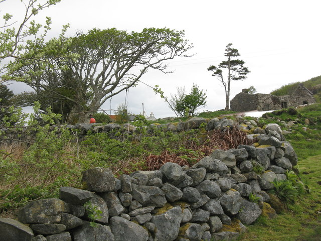 Wall, trees and ruined cottage