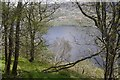 NN3401 : Loch Lomond by Richard Webb