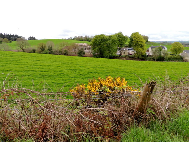 Whins, Moylagh