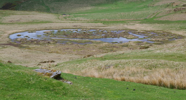 Boggy areas and pools east of Pant y Llyn