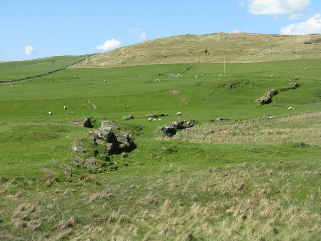 Sheep pasture at Ballachlaven
