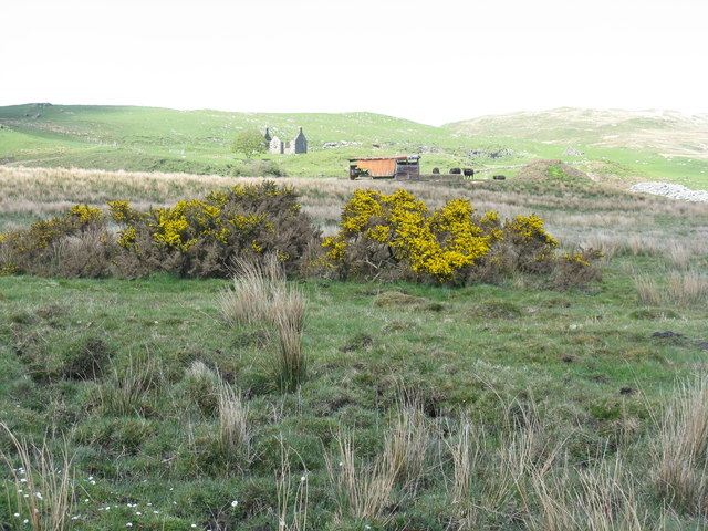 Rough grazing at Ballimartin