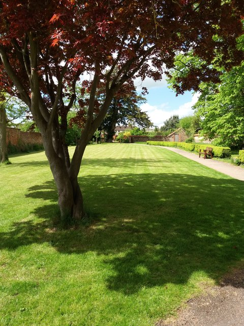 Cullompton: Walronds garden
