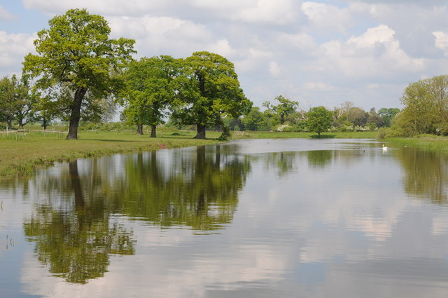 Trees reflected in Croome River