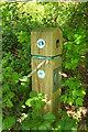 TQ0477 : Waymark, Colne Valley Trail by Derek Harper