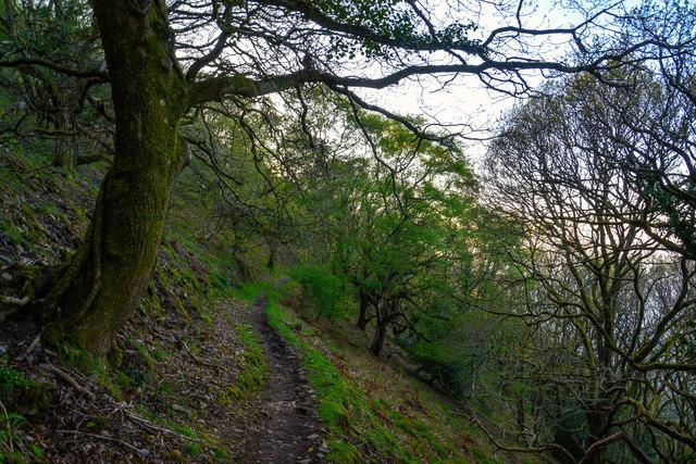 North Devon : South West Coast Path