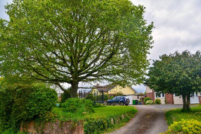 Payhembury : Berkleigh