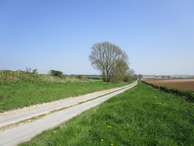 Sheep Rake Lane
