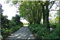 TG4802 : Church Lane, Belton by Adrian Cable