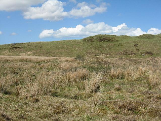 Moorland at Persabus