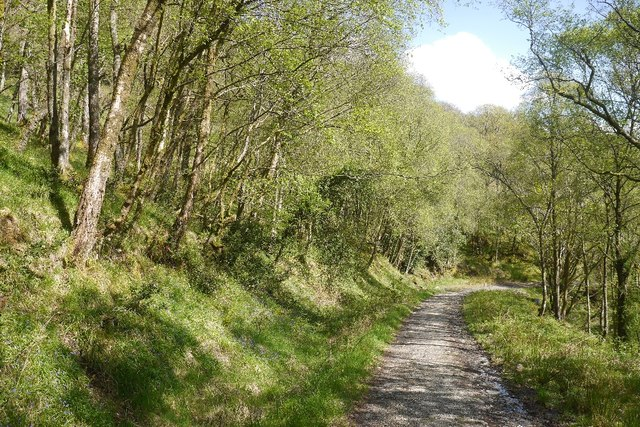 The old path from Cailness to Rowardennan