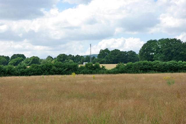 Hay field near The Field House