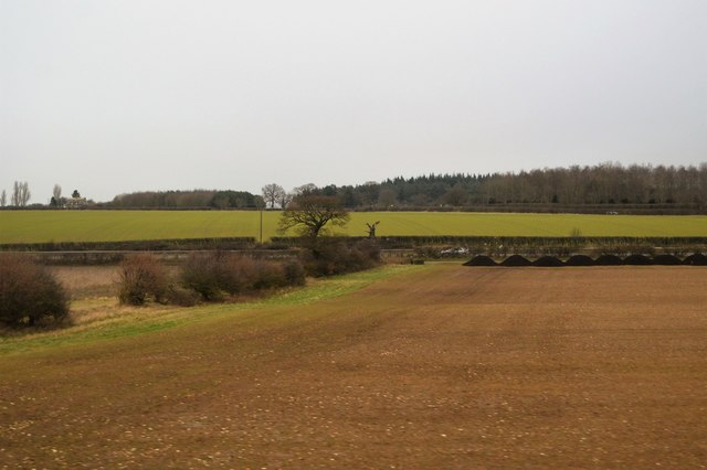 Farmland by Newmarket Rd