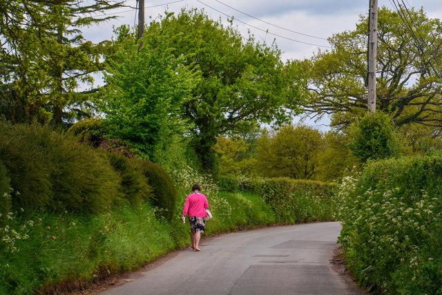 East Devon : Barrow Road