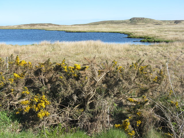 Lochan and moorland