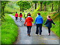 H4266 : First Omagh Church Walking Group at Baronagh by Kenneth  Allen