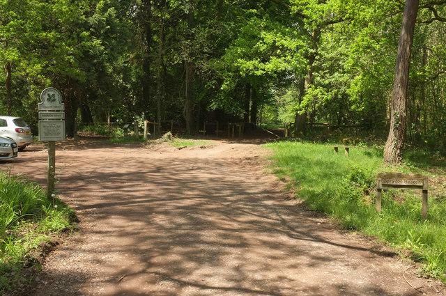 Car park, Ashclyst Forest
