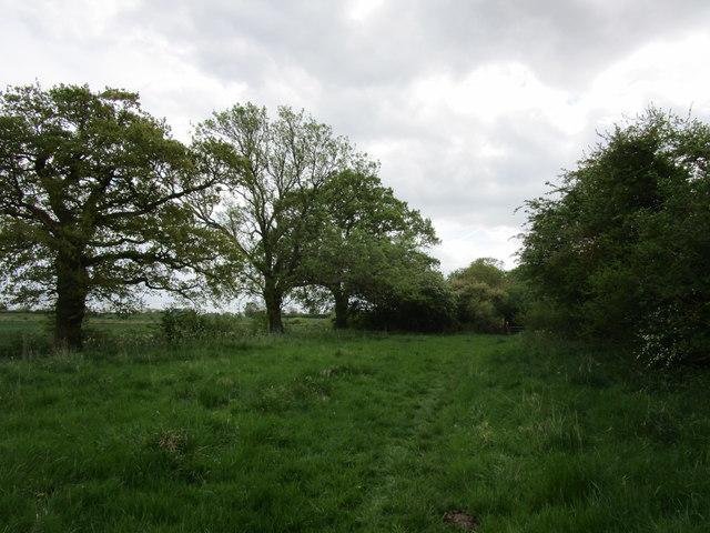 Bridleway to Edmondthorpe