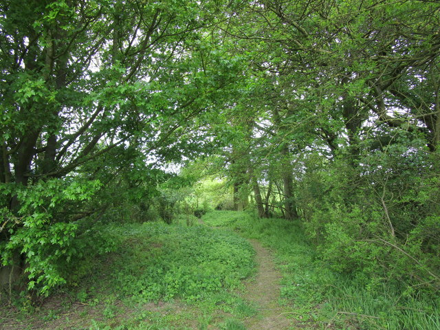 Footpath to Edmondthorpe Drift