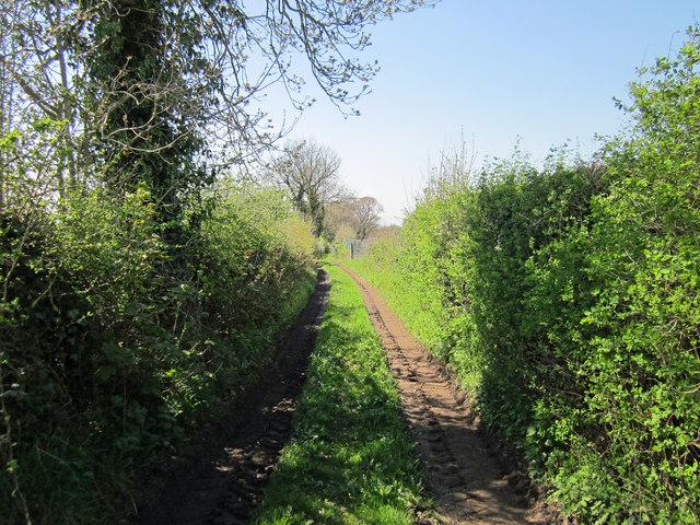 Back Lane, Kelsall