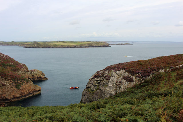 Ynys Berry seen from the coast of Ramsey Island