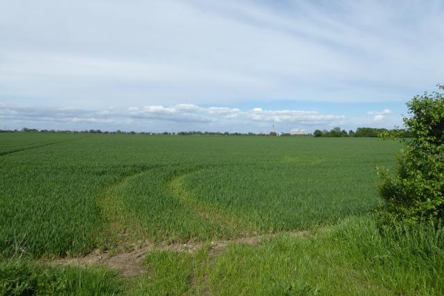 Farmland off Gowdall Road
