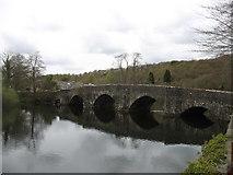 SD3686 : Newby Bridge by David Purchase