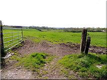 H5375 : An open field, Oxtown by Kenneth  Allen