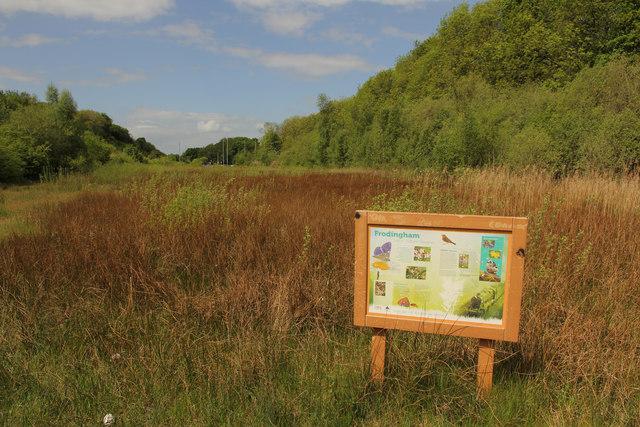 Frodingham Nature Reserve